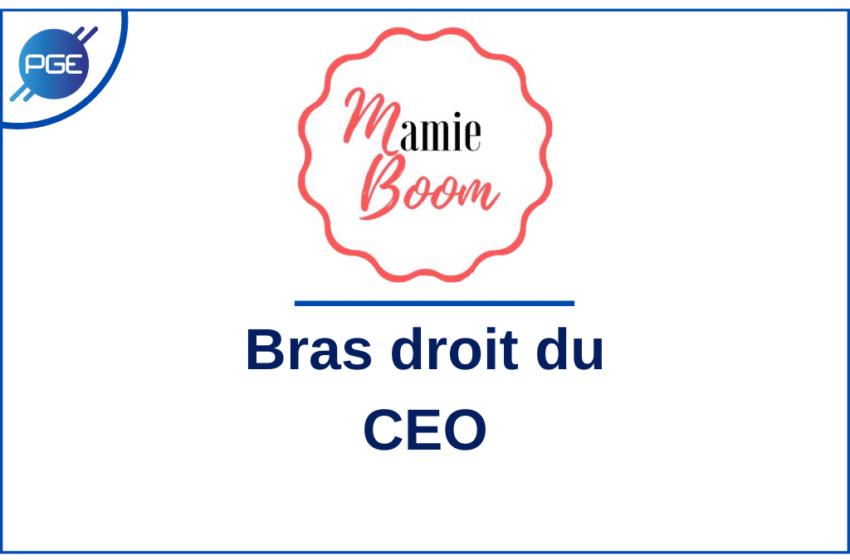 Mamie Boom : Bras droit du CEO