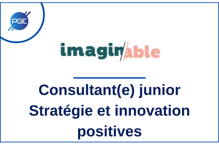 Imaginable : Consultant(e) junior