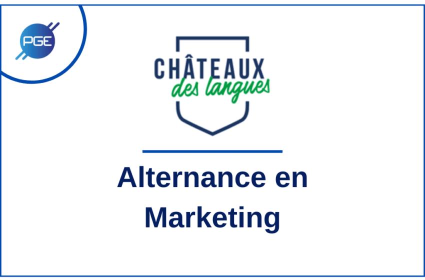 Châteaux des langues : Alternance en Marketing