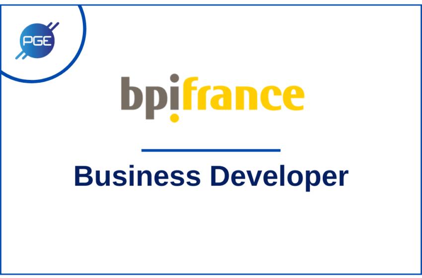 Bpifrance : Business Developer