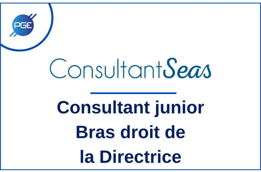 ConsultantSeas : Consultant junior – bras droit de la Directrice