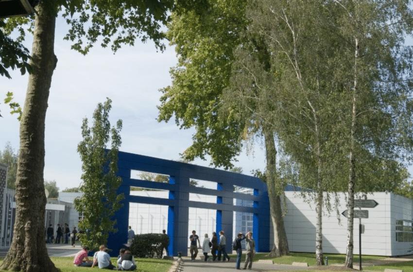 Pétition à HEC : Vers une école plus verte et engagée ?