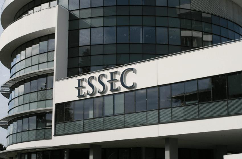 Le premier trimestre à l'ESSEC, une expérience professionnalisante unique