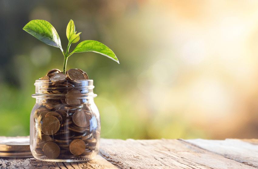 Oak Invest, le décryptage de l'investissement au quotidien