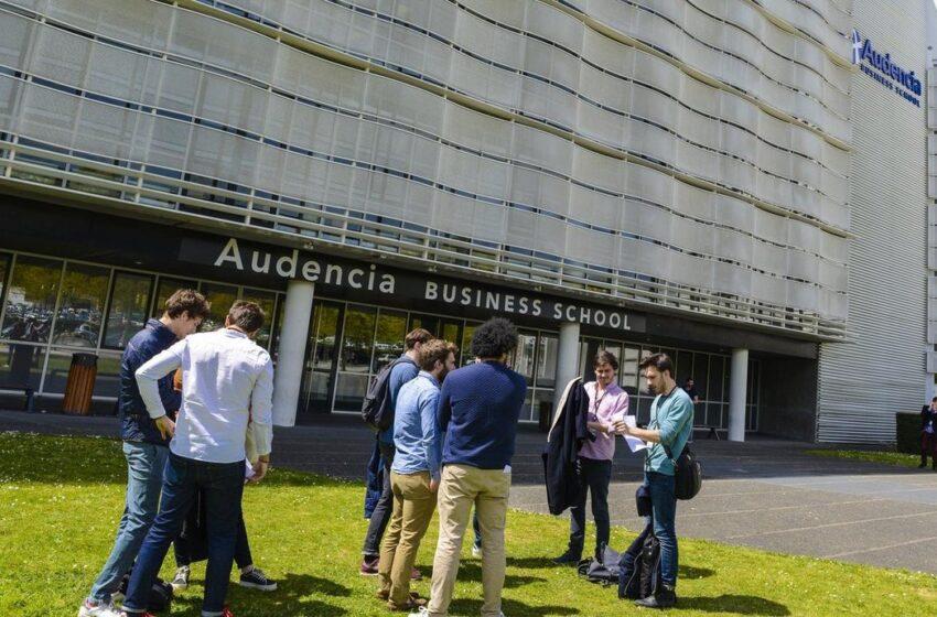 Audencia lance un nouveau programme en finance et data management