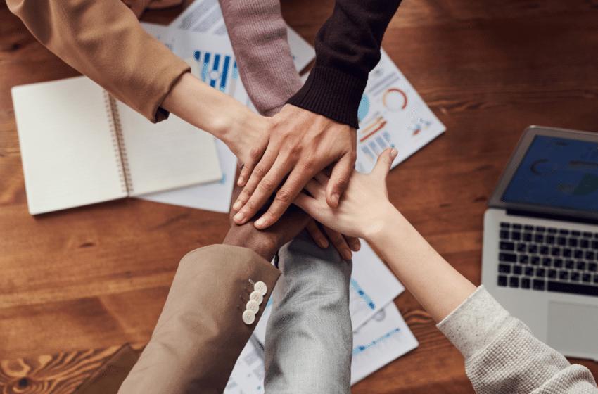 La plus-value des Junior-Entreprises en fonction des secteurs d'activité