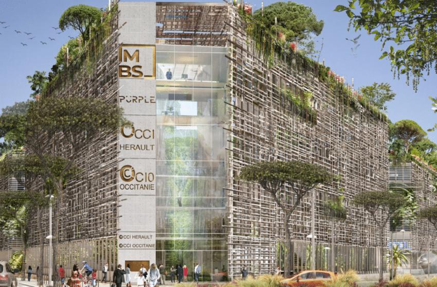 Un rooftop à MBS ? Découvrez le projet Nouveau Campus